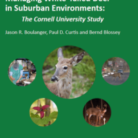 Integrated Approach for Managing White-Tailed Deer