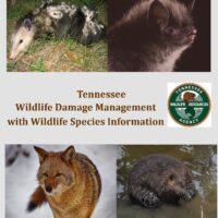 TN Wildlife Damage Management